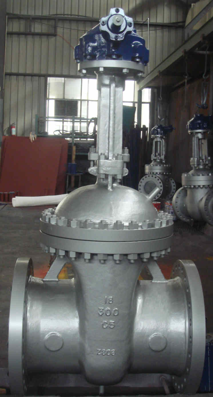 ASTM A217 WC5 Gate Valve