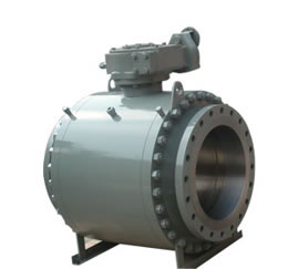 Stainless Steel Trim Ball Valve